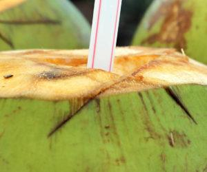 Agua de Coco: Contraindicaciones, Beneficios y Propiedades