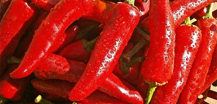 Chile rojo contiene mucha vitamina c