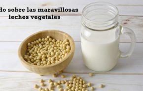 Leches Vegetales: Contraindicaciones, Efectos Secundarios y Beneficios