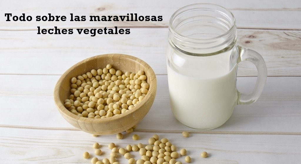 Todo sobre las maravillosas leches vegetales