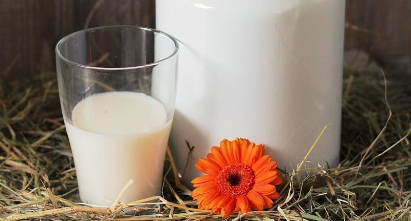 Cuánta leche consumir al día