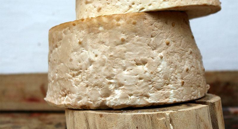 Queso de cabra bajo en lactosa