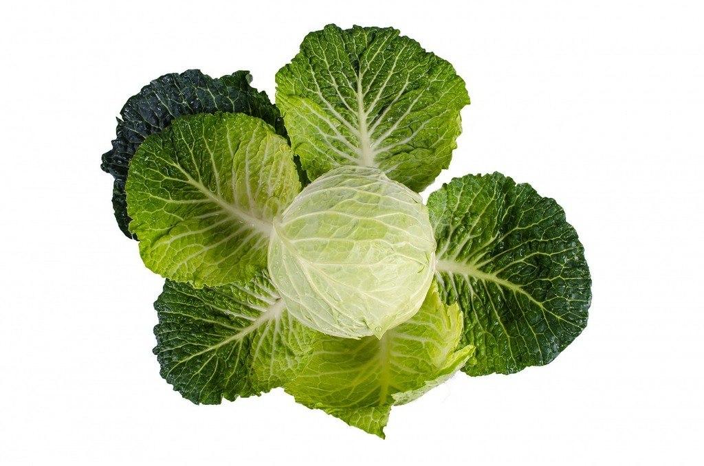 Como preparar correctamente unos deliciosos chips de kale