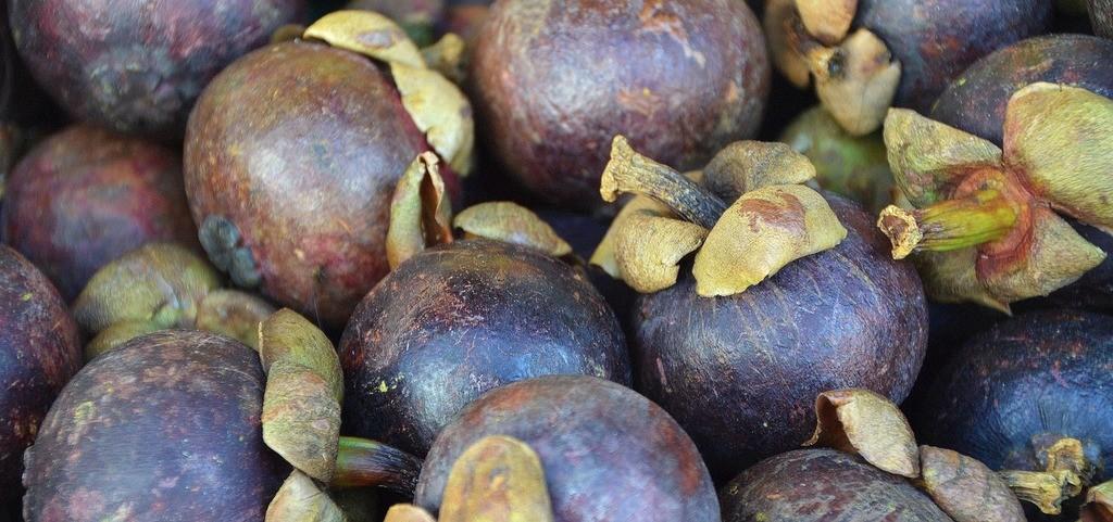 Contraindicaciones del jugo de mangostan