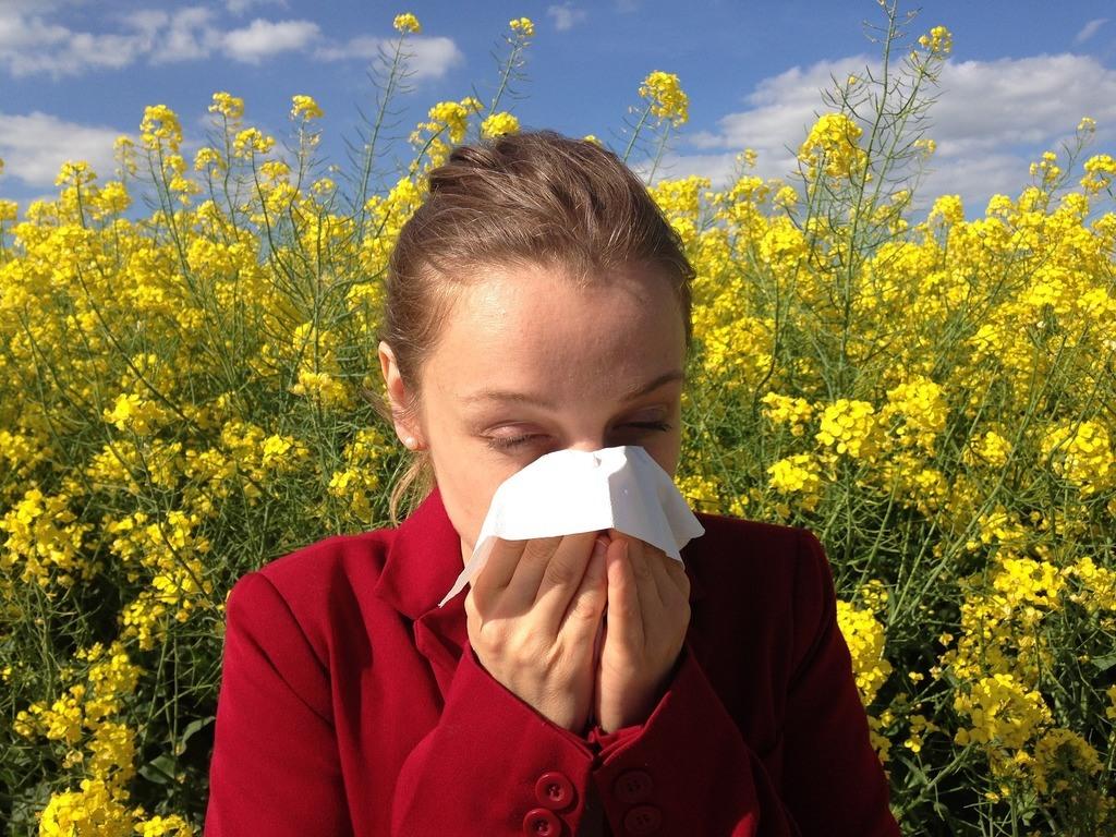El mangostán y las alergias