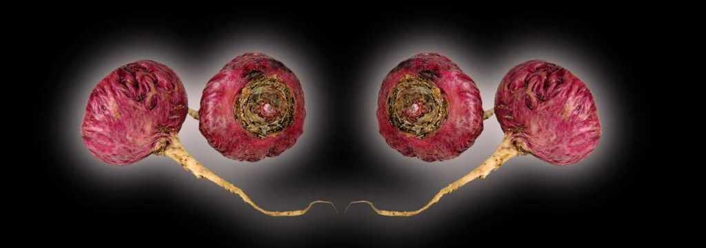 Maca roja para mejorar la fertilidad
