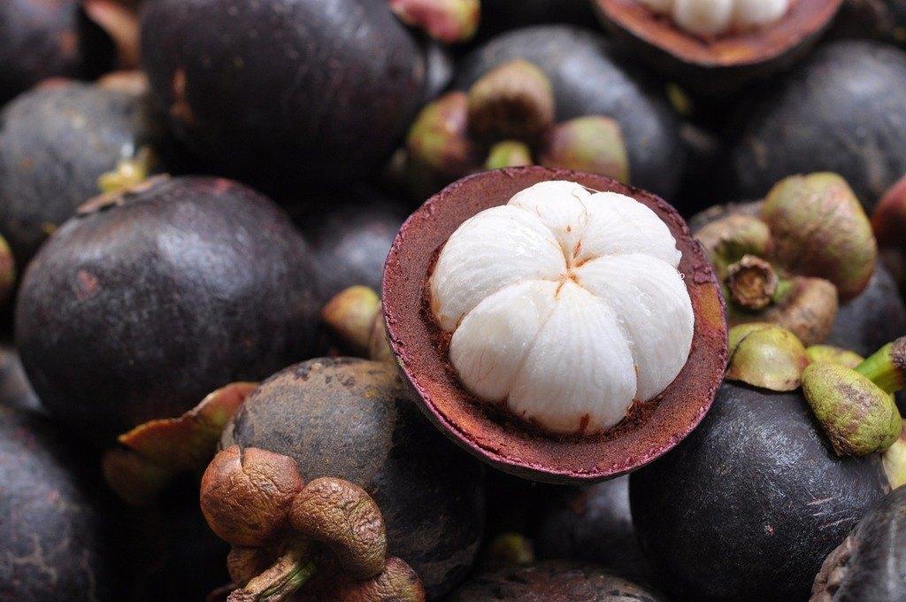 Propiedades medicinales del jugo de mangostán