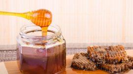 Todo sobre la jalea real: Contraindicaciones, Beneficios, Usos y Origen