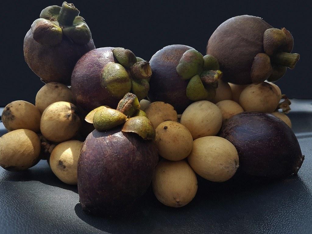 Usos medicinales del mangostán